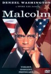 malcolm x,nationalisme noir,islam,usa,spike lee